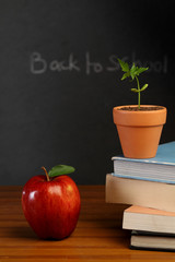Blackboard with books,apple and plant