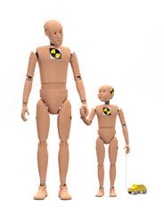 Adult Male Crash Test Dummy with Child Dummy