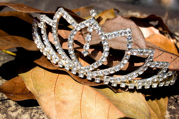 Imitation Diamond Tiara On Bed Of Fallen Leaves