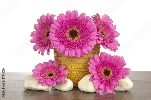 Yellow basket pink Gerbera and four white rocks
