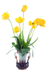 Yellow tulips in vase.