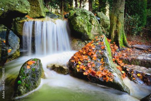 Wasserfall|57985855