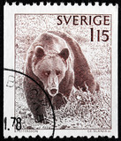 Brown Bear Stamp