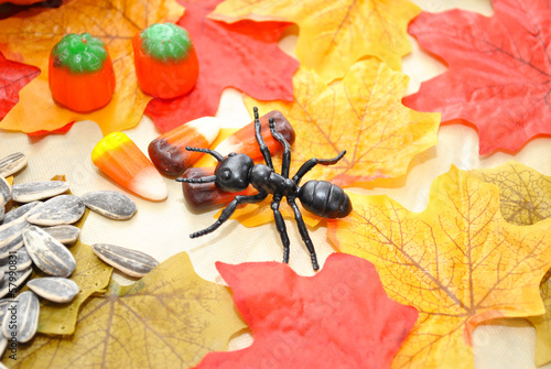 Sweet Treats with a Toy Ant
