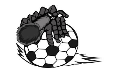Tarantula Creeping on Ball Vector Illustration