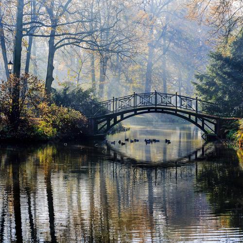 herbst-alte-brucke-im-nebelhaften-park-des-herbstes