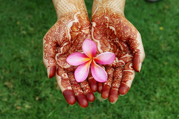 Beautiful plumeria flower in henna hands