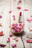 Różowe płatki kwiatowe - 58000056
