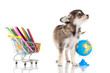 dog with pencil and globe