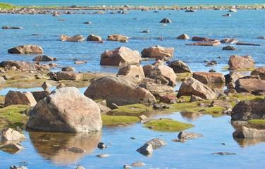 Hudson Bay Low Tide Stone Desert