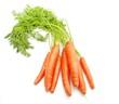 Zanahorias sobre fondo blanco