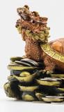head dragon of turtle