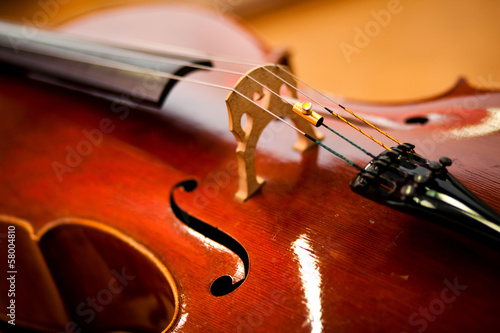 Violoncello close up