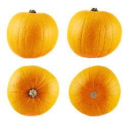 Ripe orange pumpkin isolated