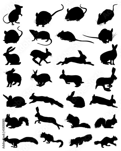 Black silhouettes of rodents, vector illustration