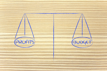 find balance between allocated budget and desired profits