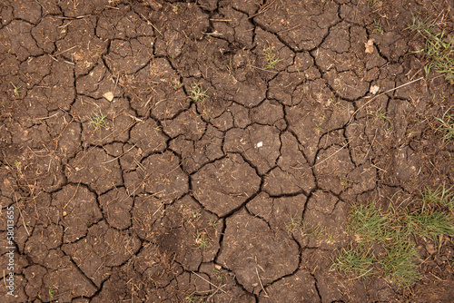 Closeup of dry soil texture - 58013655