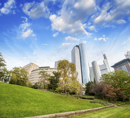Frankfurt, Germany. Beautiful park with modern city skyline on a