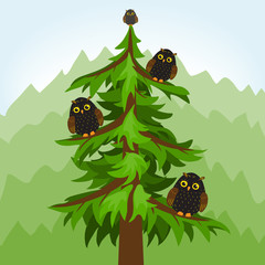 Owl tree in a forest