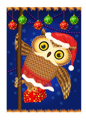 Owl with Christmas gift