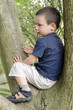 Child on tree