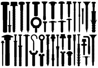 Set Of Different Screws
