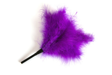 Purple Feathered fetish equipment
