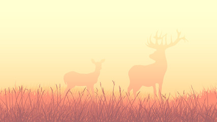 Horizontal illustration of deers in morning field.