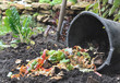 déchets pour compostage