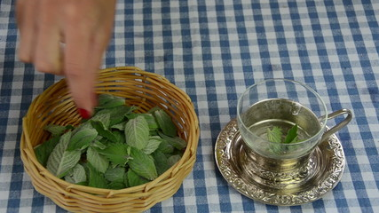 housewife preparing healthy natural mint herb tea
