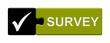 Puzzle-Button schwarz grün: Survey