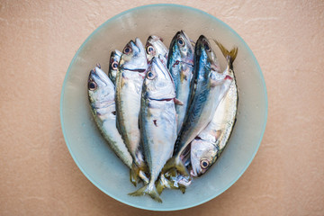 Raw Fish in a bowl isolated