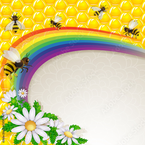 Bee and daisy over rainbow and honeycombs
