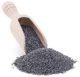 Shovel of Poppy Seed