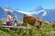 Girl with a jug of milk and cows. Jungfrau region, Switzerland