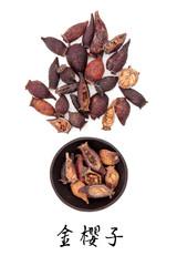Cherokee Rose Hip Fruit