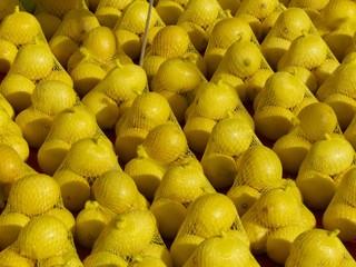 Zitronen in gelben Netzen auf einem Wochenmarkt in Istanbul