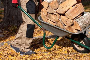 Firewood on the wheelbarrow