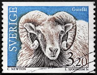 Gotland Sheep Stamp