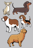dogs vector collection part 2