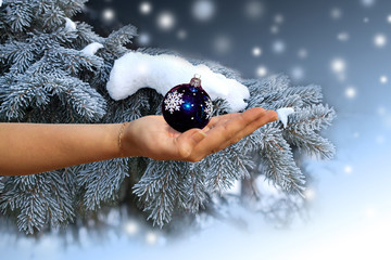 Female hand with a christmas sphere on a background of a blue sp