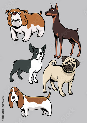 dogs vector collection part 1