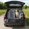 canvas print picture - Hund in einem Auto auf Reisen