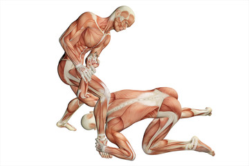 armlock on hand, men with visible muscles