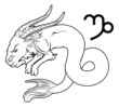 Capricorn zodiac horoscope astrology sign