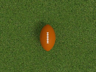 Rugby ball on a grass , 3d
