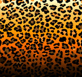 Abstract background with seamless leopard pattern