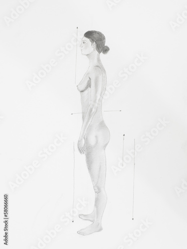 Side view anatomic women naked pencil drawing