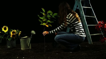 Female Planting Green Plant Gardening Ecology Concept