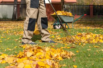 Gardennig in autumn